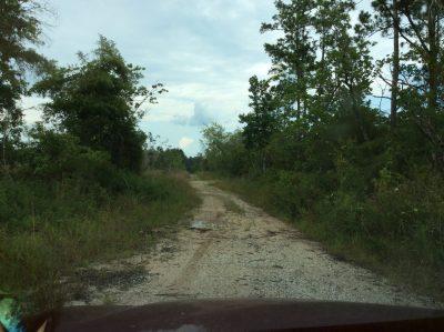 E Hwy 109 Tract, Calcasieu Parish, 40 Acres +/-