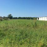 Rapides Parish Commercial property for sale