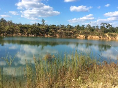 Hunting land for sale in Allen Parish