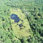 Hunting land for sale in Webster Parish
