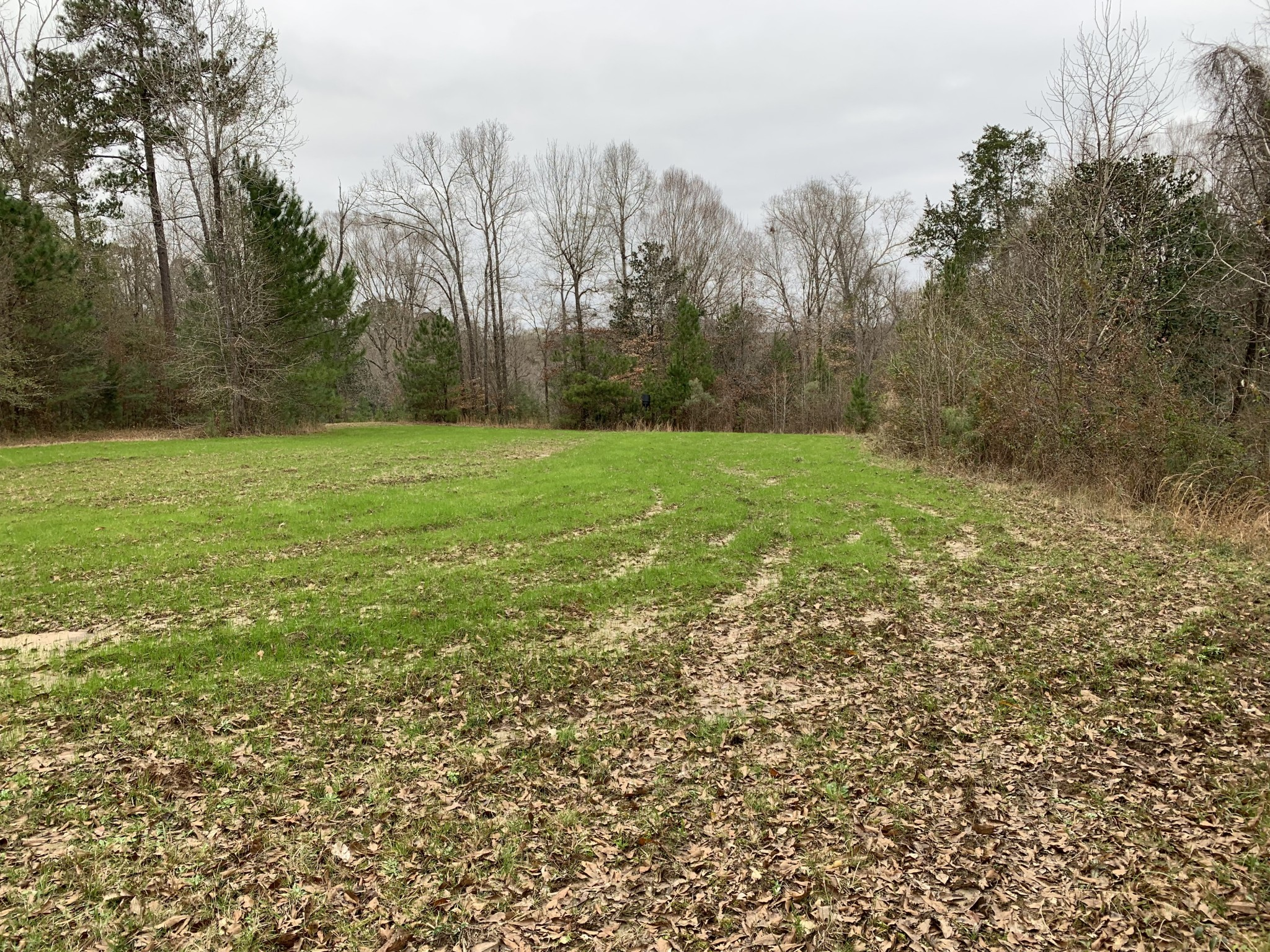 Cheerful Valley Lot 1A, Lot 1B, and Lot 1C Tracts, West Feliciana Parish, 14 Acres +/-